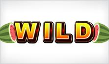 random-wilds