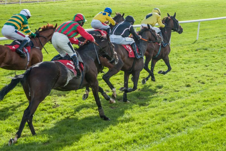 Horses sprint to finish