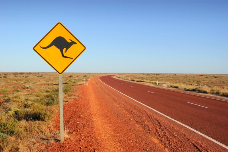 Kangaroo traffic sign