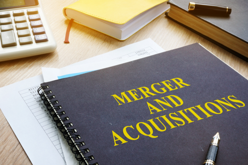 Book titled MERGER AND ACQUISITIONS