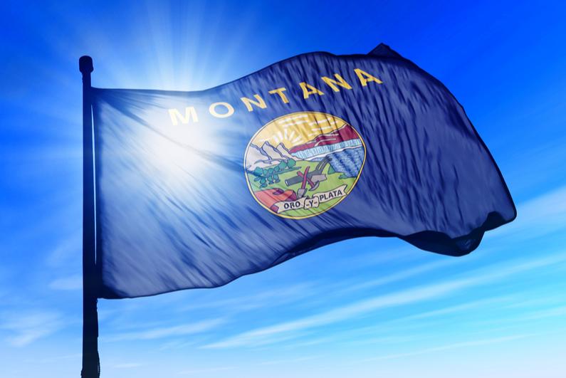 State flag of Montana