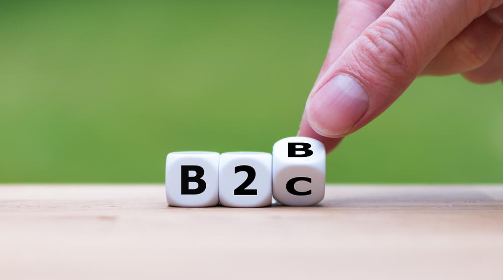 dice spelling b2b and b2c