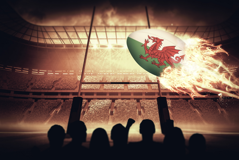 Silhouettes of Welsh supporters against rugby pitch.