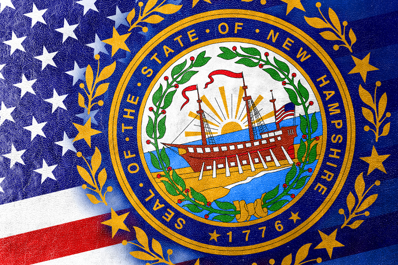 New Hampshire state flag painted on leather texture