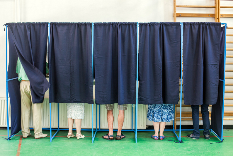 people voting in some polling booths