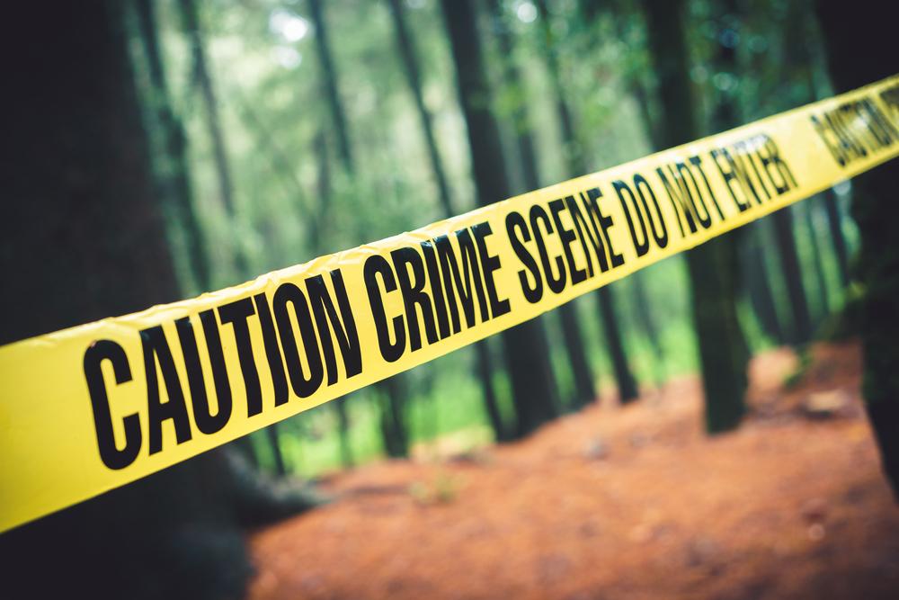 yellow crime scene tape in woods