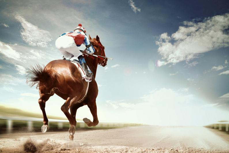 horse leading a race
