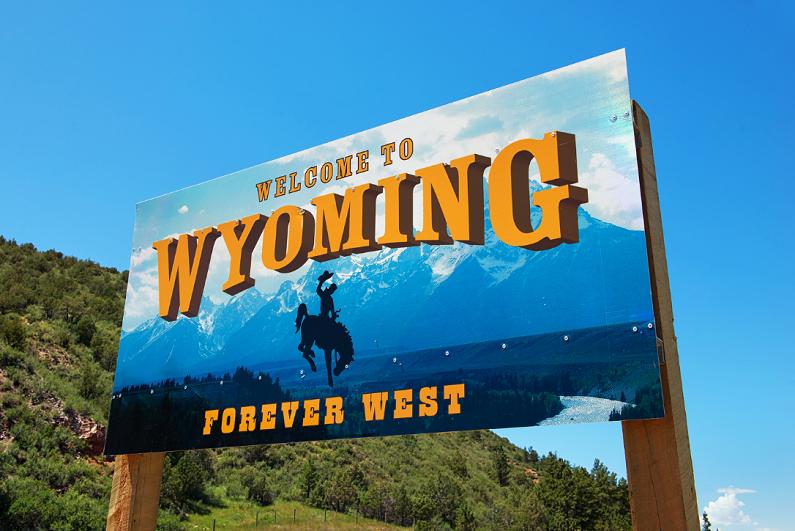 Wyoming state sign