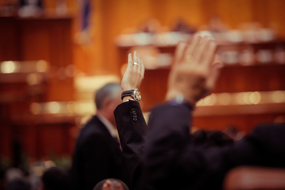 hands raised indicating hand vote