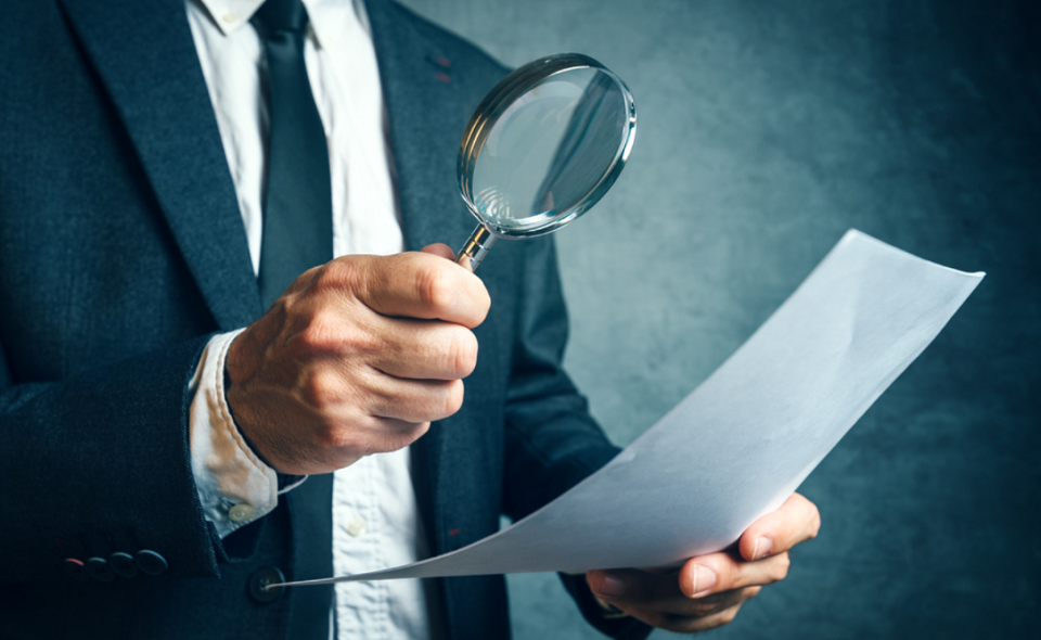 tax inspector investigating company documents