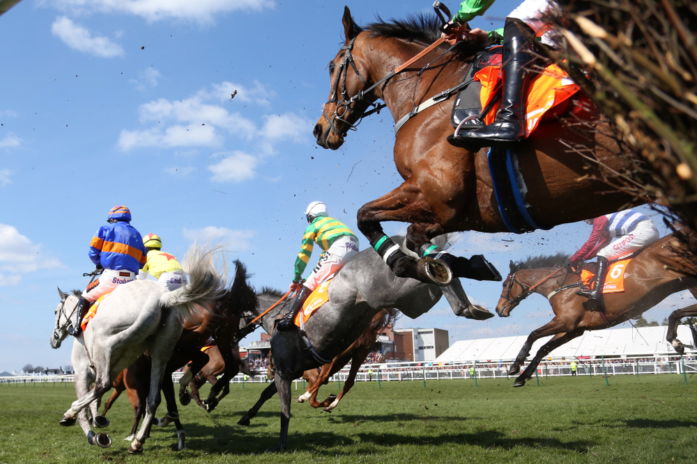 horses and jockeys in action during a race