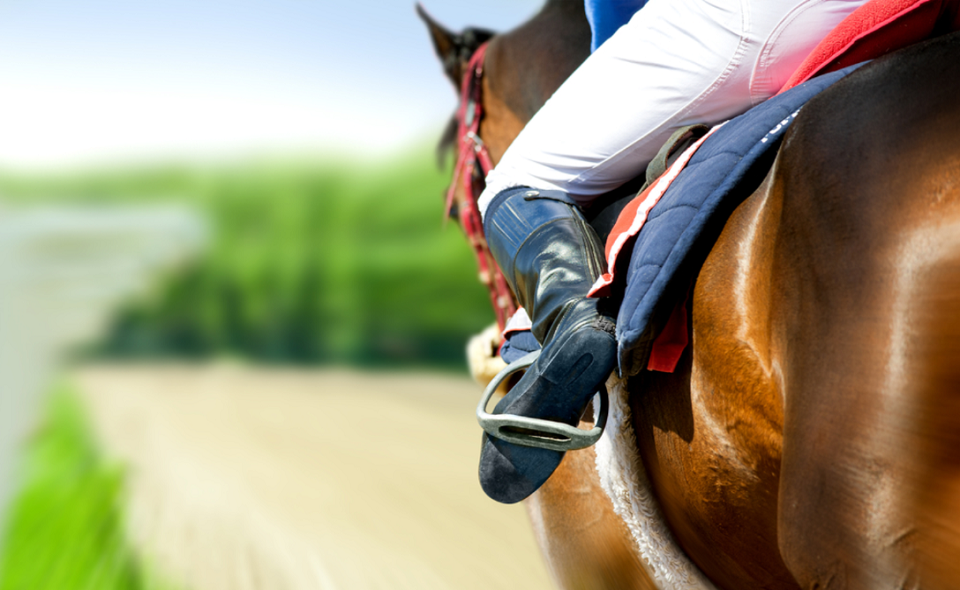 horse coming first on hippodrome racetrack