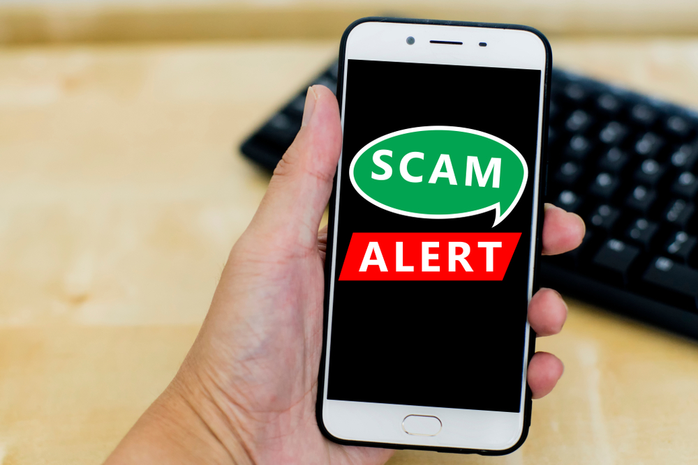 hand holding a cellphone with its screen containing the words scam alert