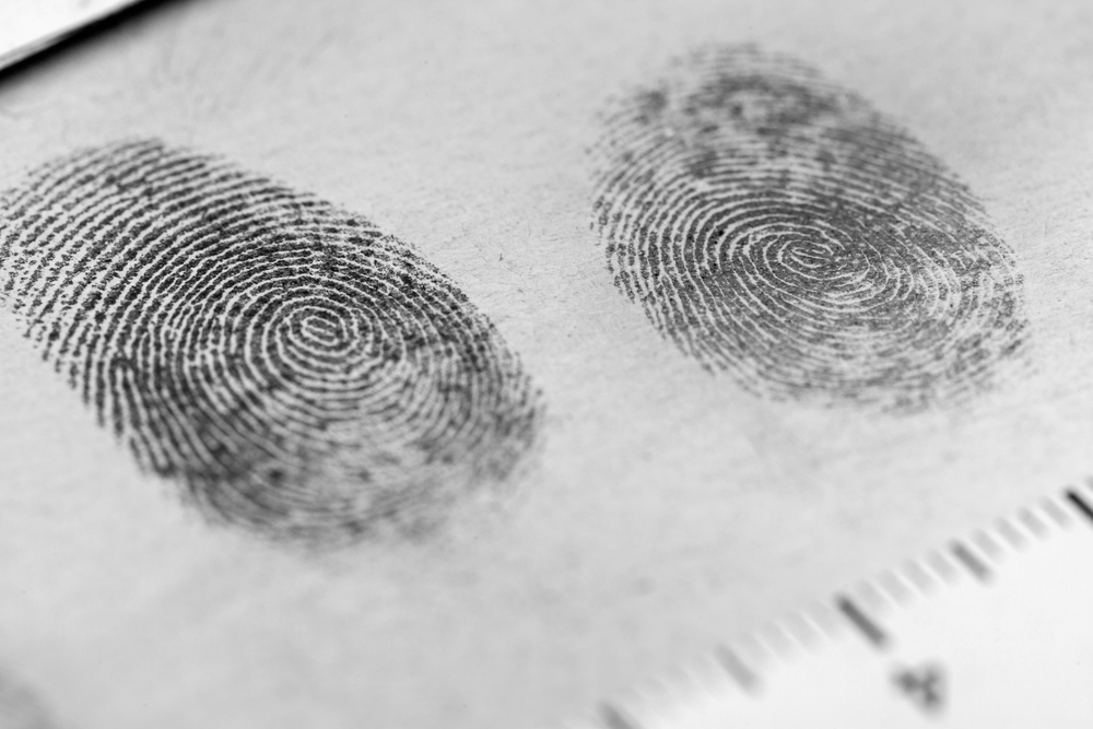 fingerprints in crime investigation