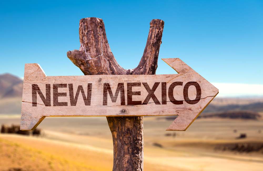 wooden sign indicating New Mexico direction against a desert backdrop