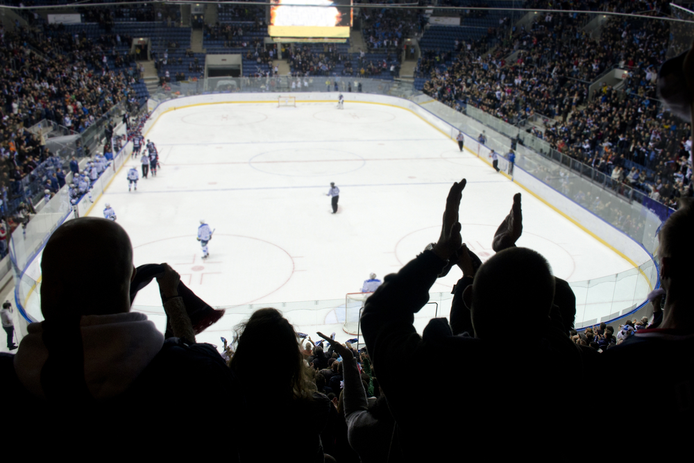 fans look on and applaud the game taking place in a hockey stadium