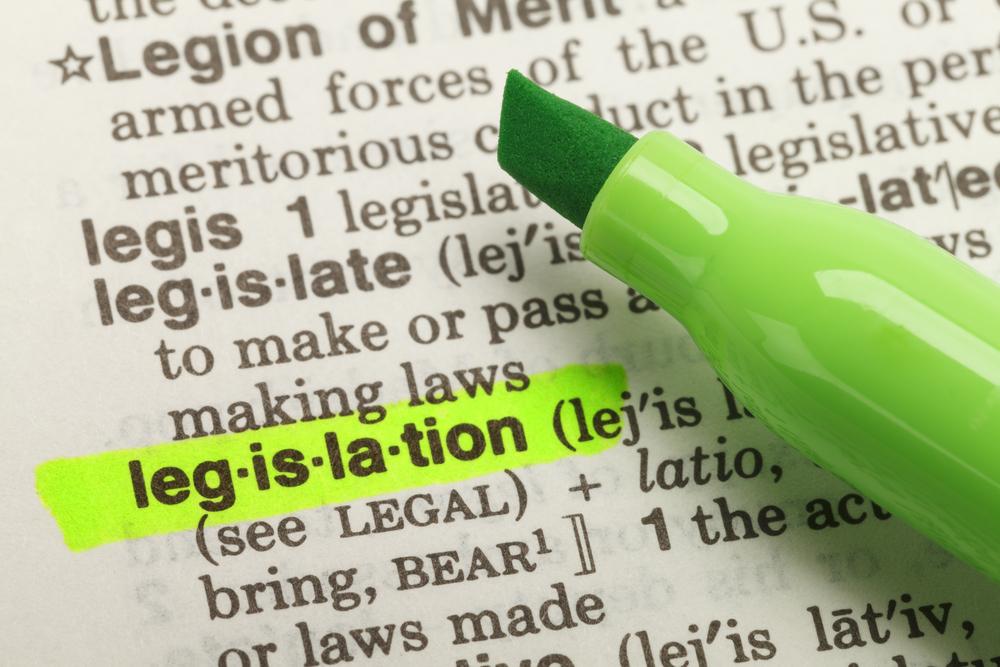 """green marker highlights the dictionary entry """"legislation"""""""